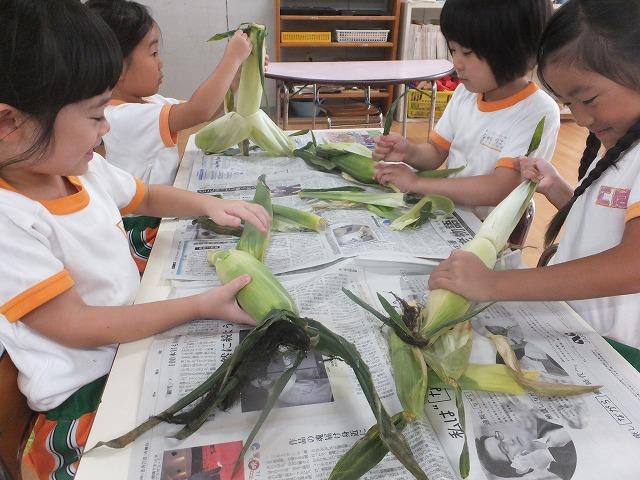 【高知幼稚園】食育の時間